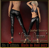 Sexy Leather Pants and top *Ebony Dreams* - black